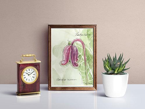 Leather Vase Vine Flower Print - Reproduced Print of Original Art ($8-$18)