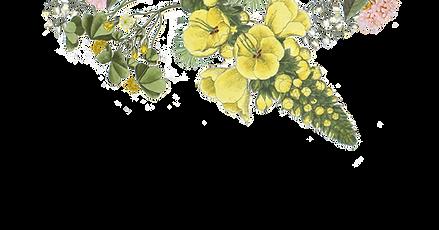イラスト花