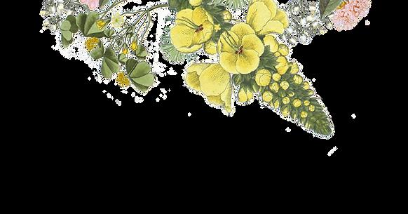 Illustrated Flowers