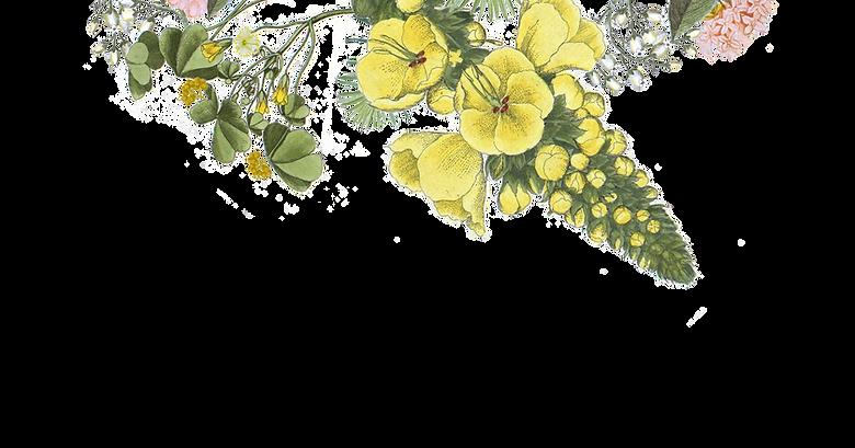 ilustrované Flowers