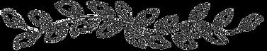 melissa-porter-vine-scan.png