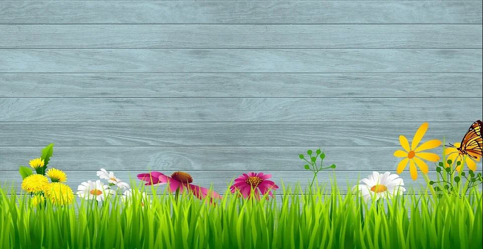 spring_back.JPG