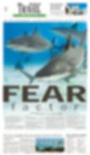 Sharks TR.jpg