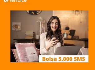 Copia de Bolsa 1.000 SMS (4).png