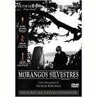 dvd morangos silvestres-800x800.png