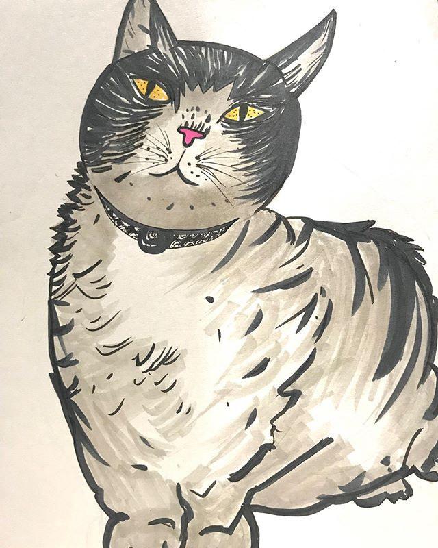 #gatos _#chats _##felins_#ilustração.jpg