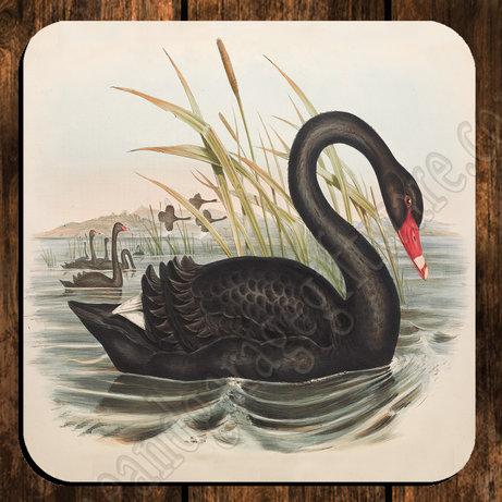 coaster single black swan