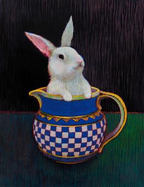 Special Bunny.jpg
