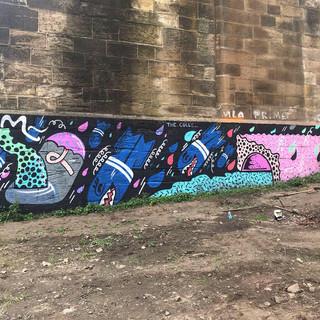 Whole Wall