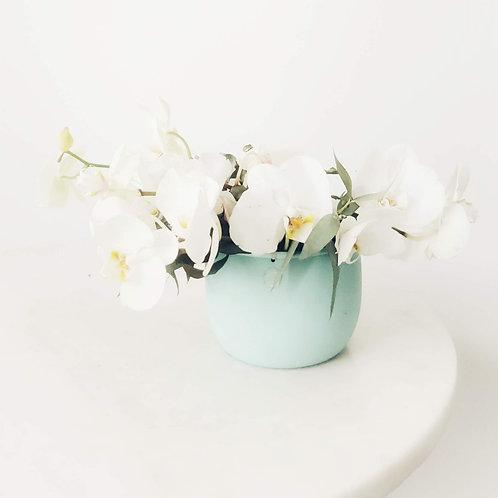 Mini Arranjo de Orquídeas