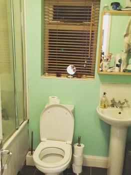 main-bath-before.jpg