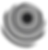 4_Grayscale_logo_on_transparent_1024_edi