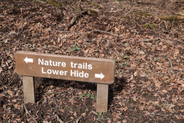 To the Hides and the Trails