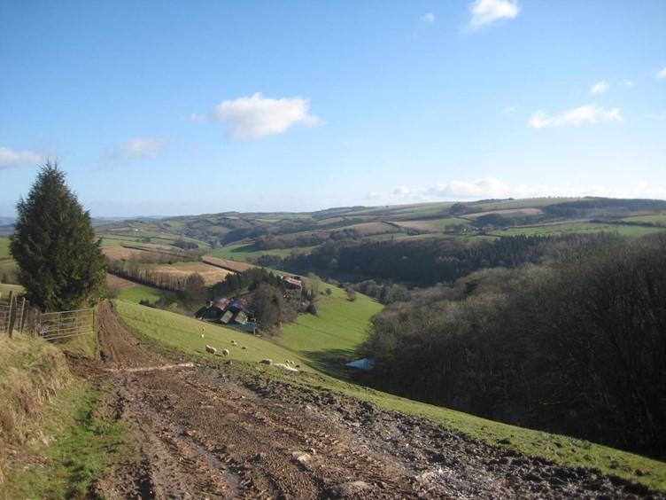 On the Coleridge Way
