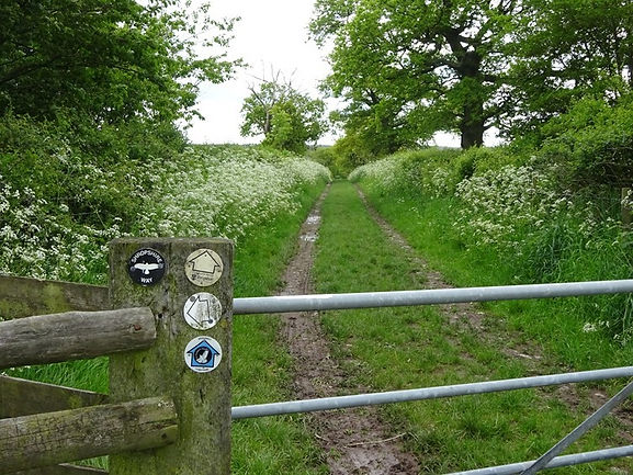 From Ebury Hill to Haughmond Abbey on the Shropshire Way