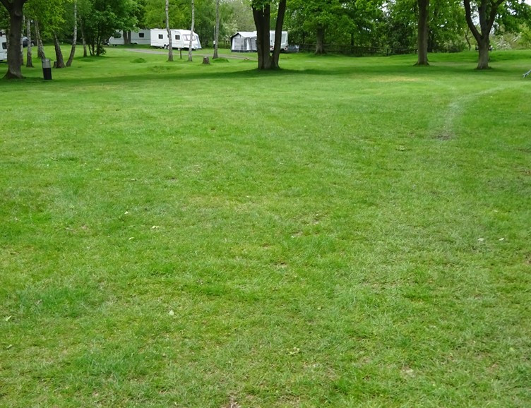 Grass Pitches at Ebury Hill Site