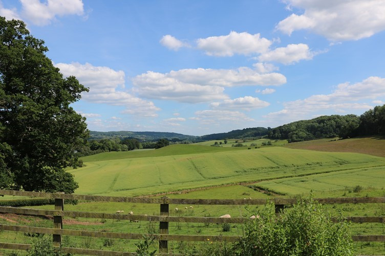 The Green Green Grass of Worcestershire