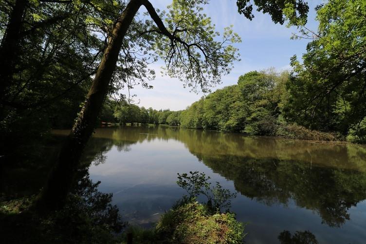 An outlook across the lake