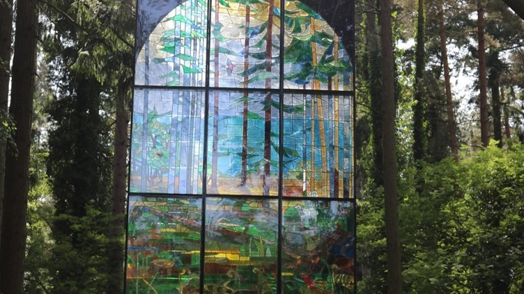 The Stained Glass Window of the Forest