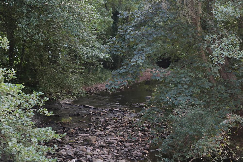 The River Honddu