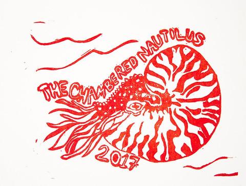 chambered nautilus.JPG