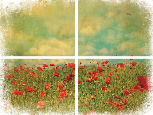 Field of Flowers Transfers