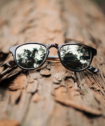 schwood sunglasses on tree