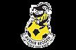 Avenir_Beggen-Logo-vector-avec-contour-b
