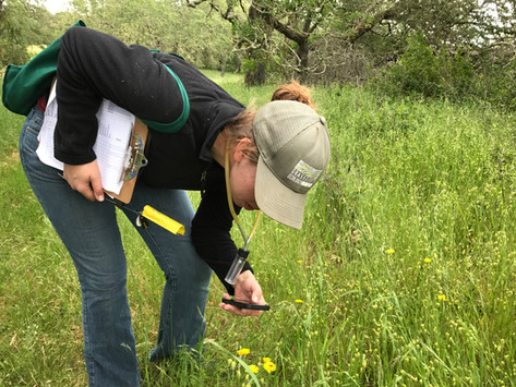 WHY IS CITIZEN SCIENCE SO IMPORTANT
