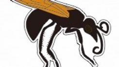 Wasp Pin