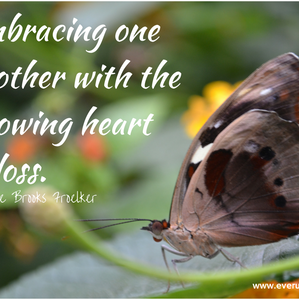 The Knowing Heart of Loss