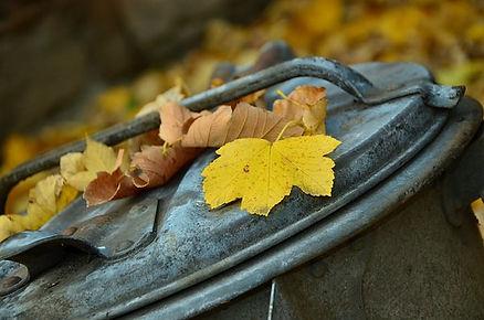 autumn-1013608__340.jpg