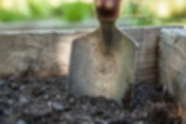 garden-1176406__340.jpg