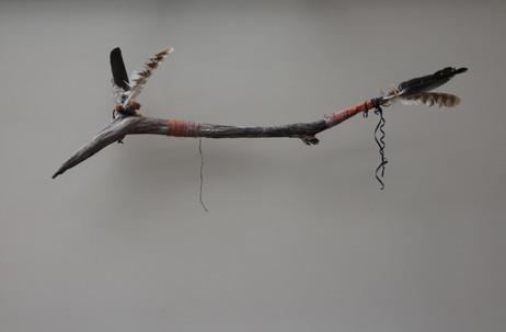 hanging bird.jpg
