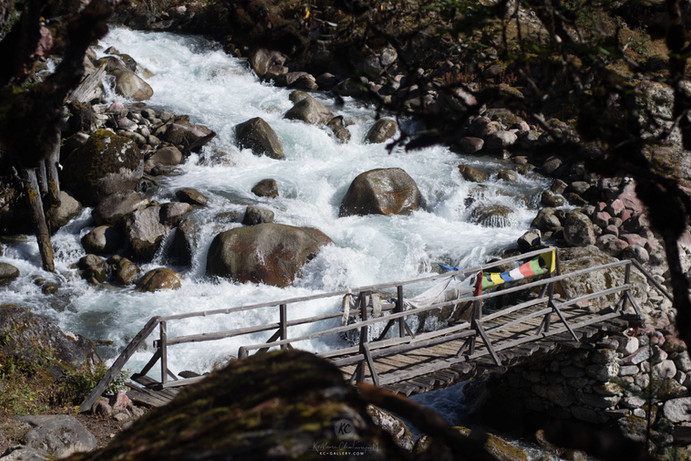Scenic river flow with wooden bridges