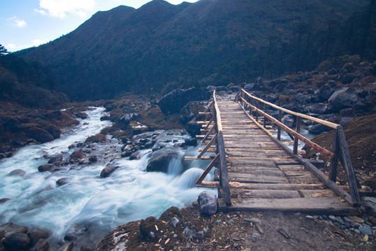 Wooden bridges on the trail