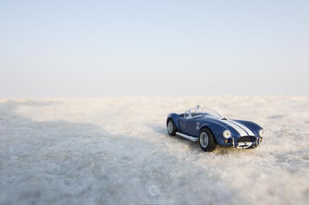 1965 Shelby Cobra on Salt Marsh of Rann of Kutch