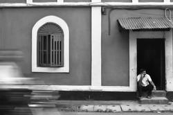 Goa August 2013-7584