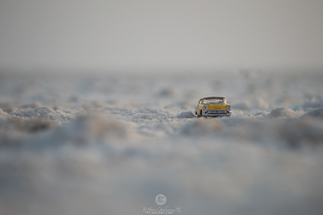1957 Cevrolet Bel Air on Salt Marsh of Rann of Kutch