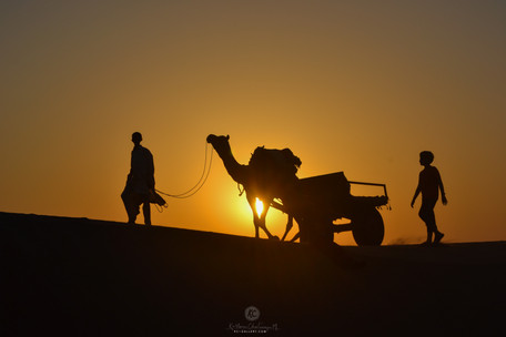 Sunset near Sam dunes - Jaisalmer