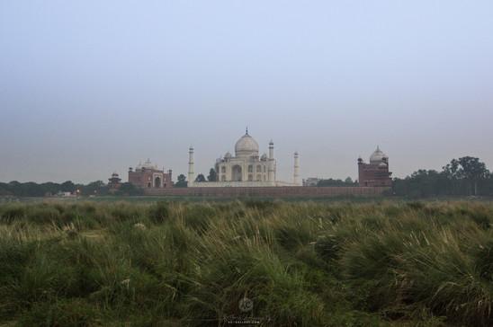 Taj as seen from across Yamuna river