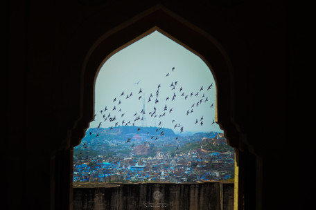 Jodhpur as seen from Mehrangarh Fort