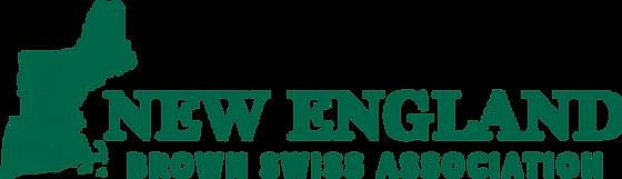 NEBSA logo.png