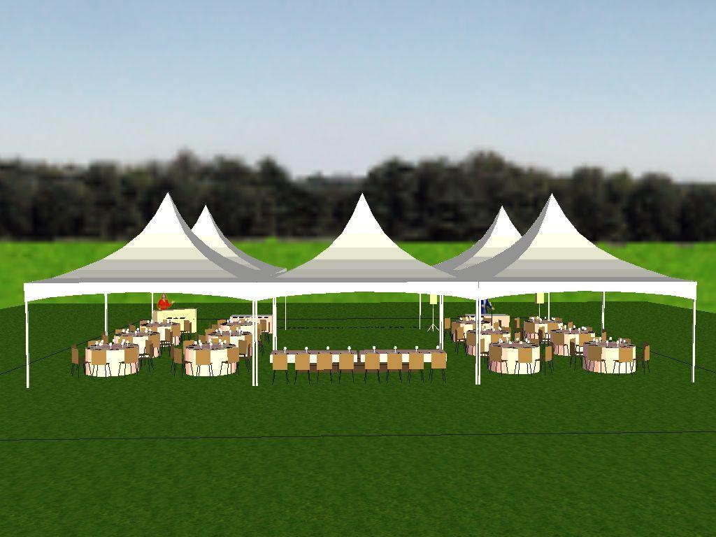 Five 20'x20' Square Tents