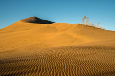 Dunes-w_sandripples_3x2.jpg