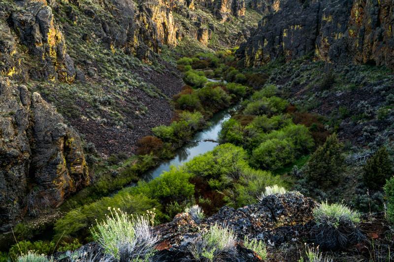 Deep Creek Canyon riparian areas