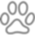 icons8-cat-footprint-100.png