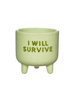 I Will Survive Planter.jpg