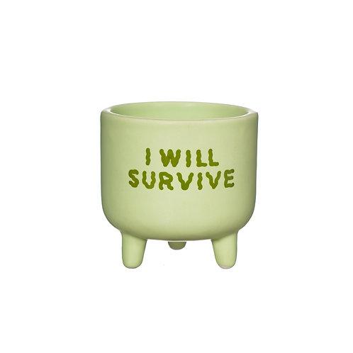 I Will Survive Planter | Sass&Belle