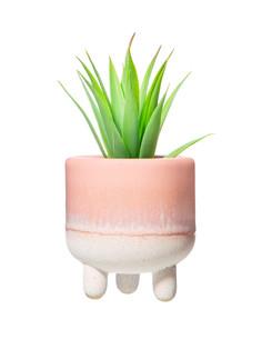 Pink Mojave Planter 2.jpeg